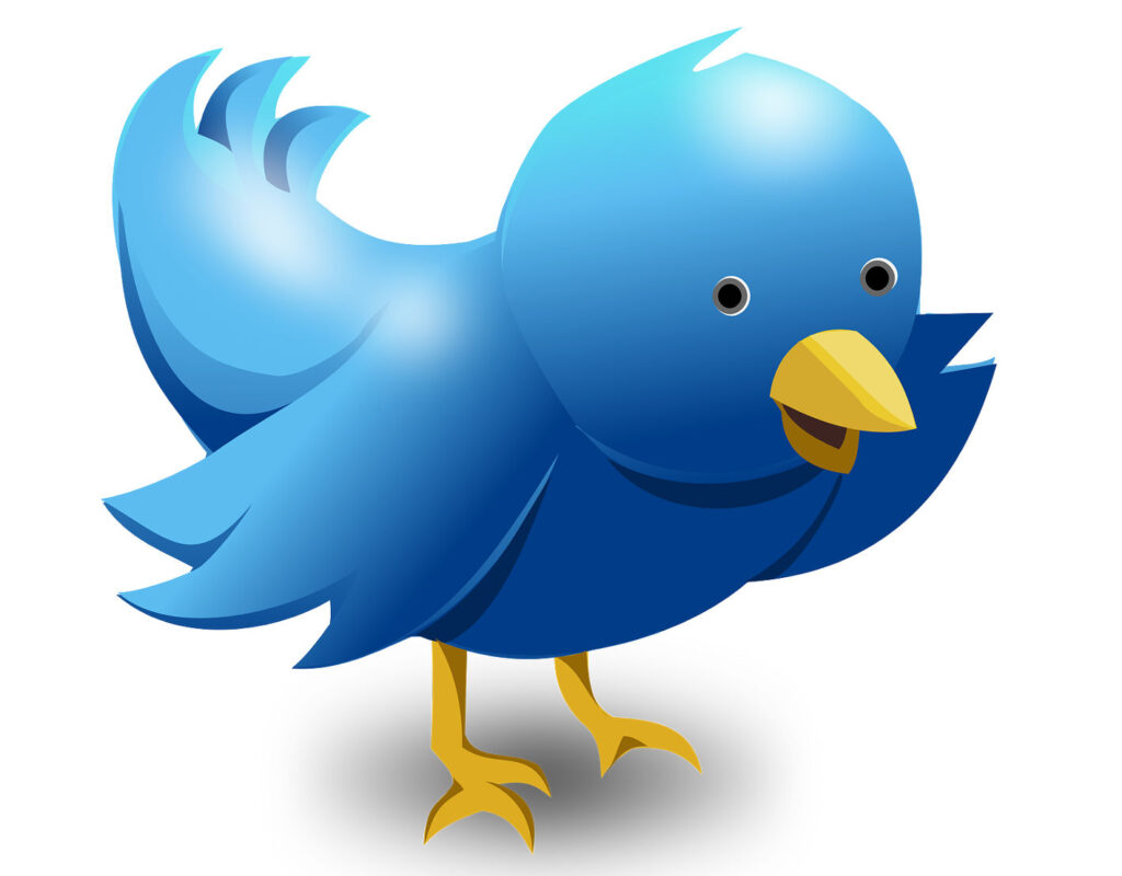 Twitterowe walki domenowe