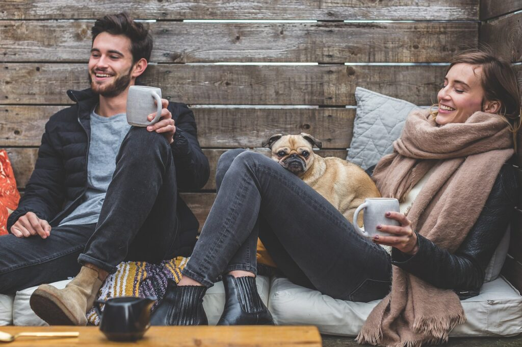 wakacje a pies