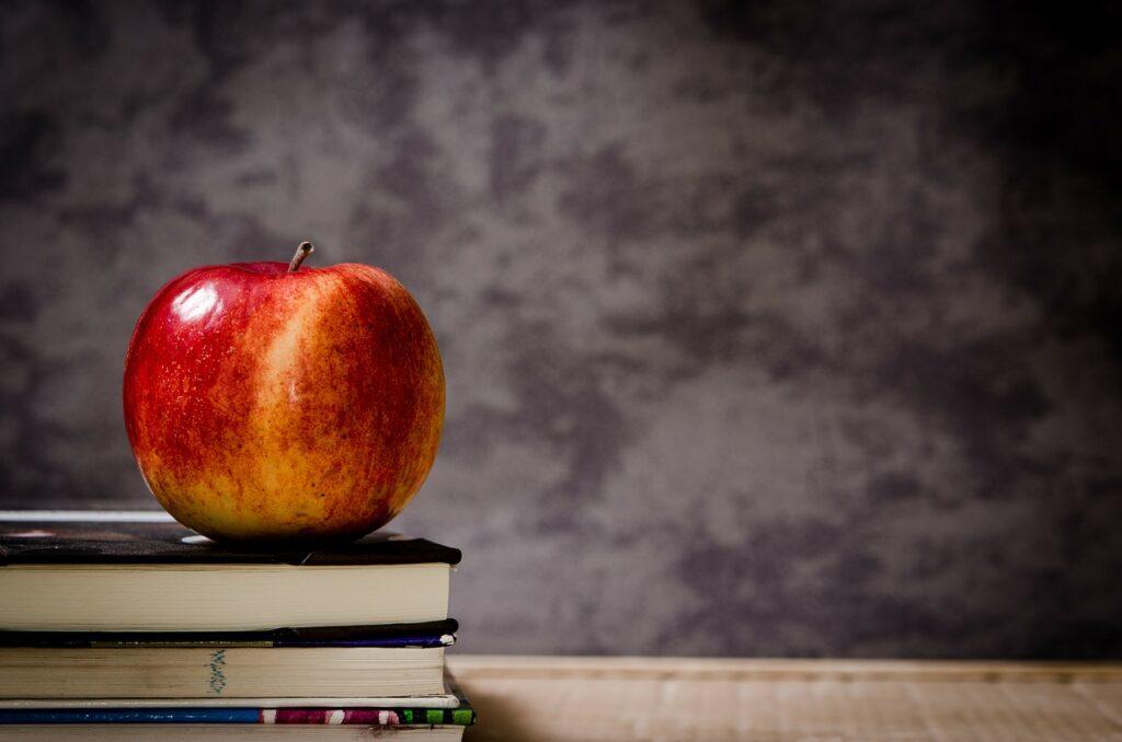 zarabianie na materialach ze szkoly